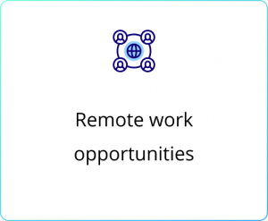 Remote work opportunities